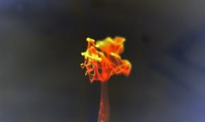 liquid-fire-explosion-lava-free-stock-photo-2